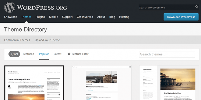 Which Type of WordPress Theme Should You Choose?