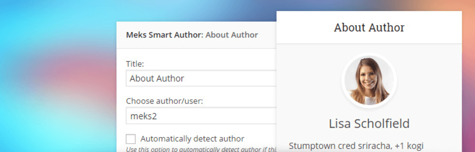 The Meks Smart Author plugin.