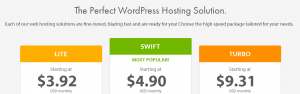 Our selection of WordPress hosting plans.