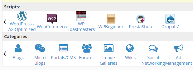 Installing WordPress using cPanel.