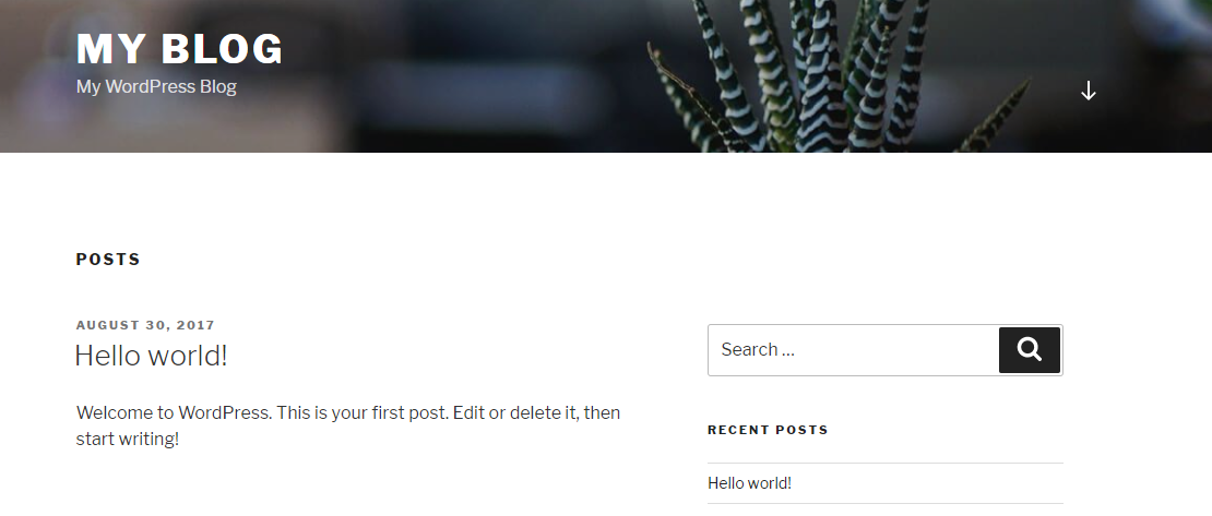 A new WordPress setup.