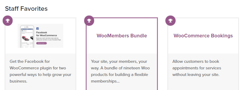 An example of a few WooCommerce extensions.