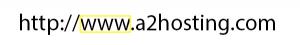 The www prefix.