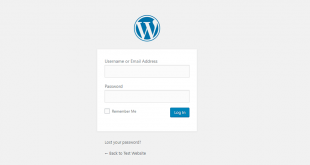The default WordPress login page.