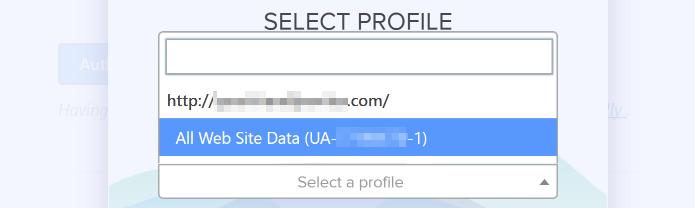 Choosing your Google Analytics profile.