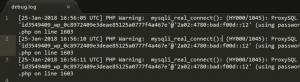 An example of a WordPress error logs.