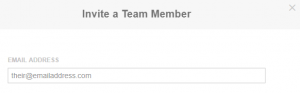 Inviting a new member to your team using their email address.
