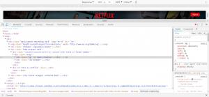 The Chrome DevTools panel.
