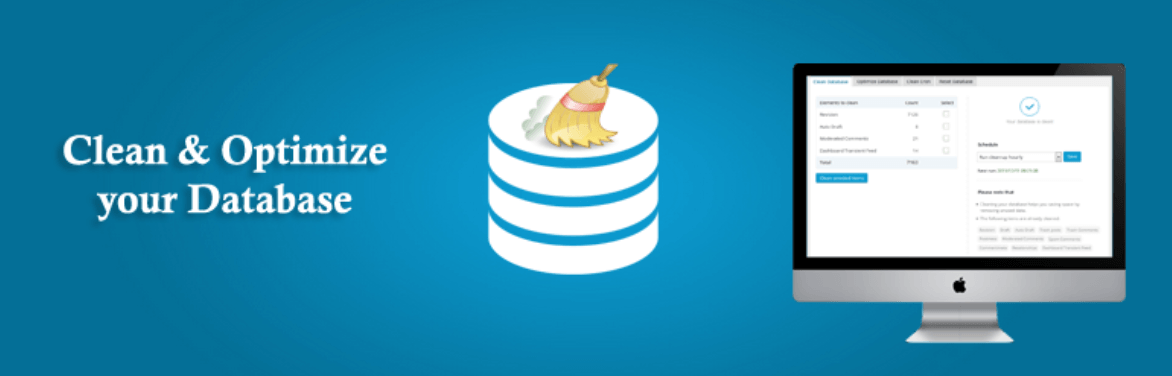 The Advanced Database Cleaner plugin.