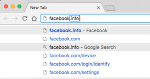 A search for Facebook using a .info TLD.