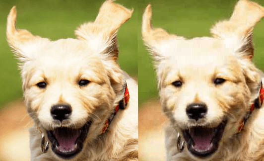 A PNG and a JPG side by side.