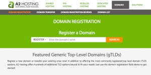 The A2 Hosting domain checker tool.