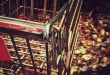 A shopping cart on leaves.