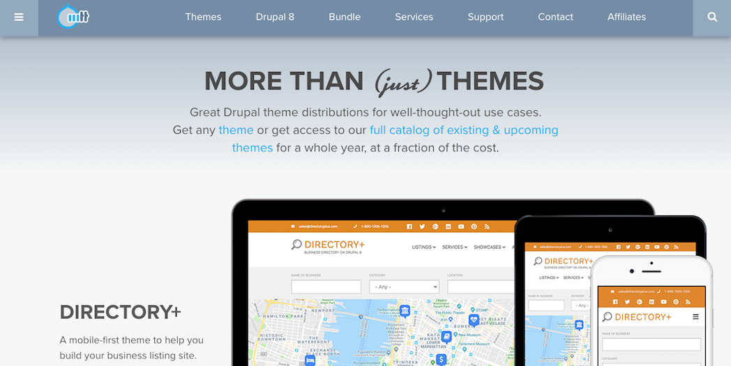 The More Than Themes website.