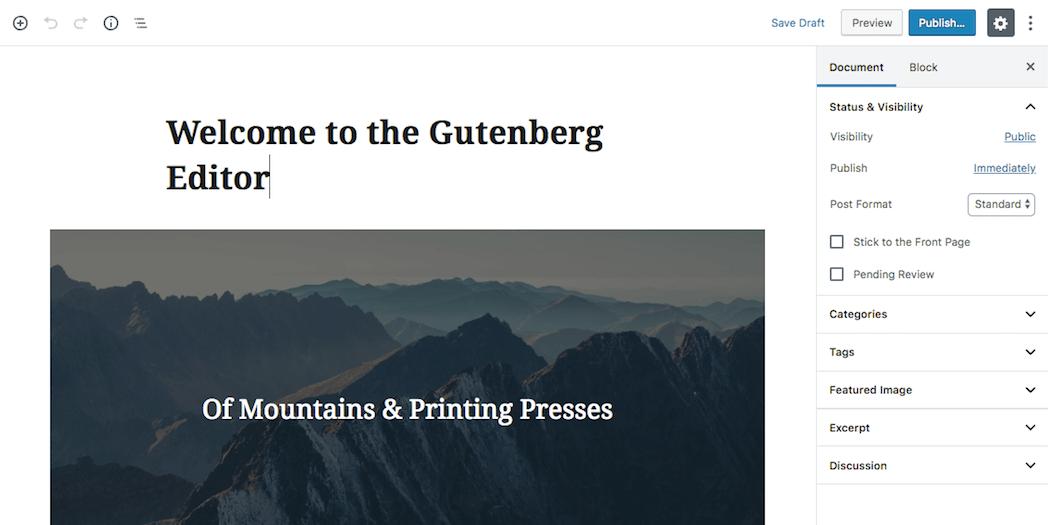 The Gutenberg editor.