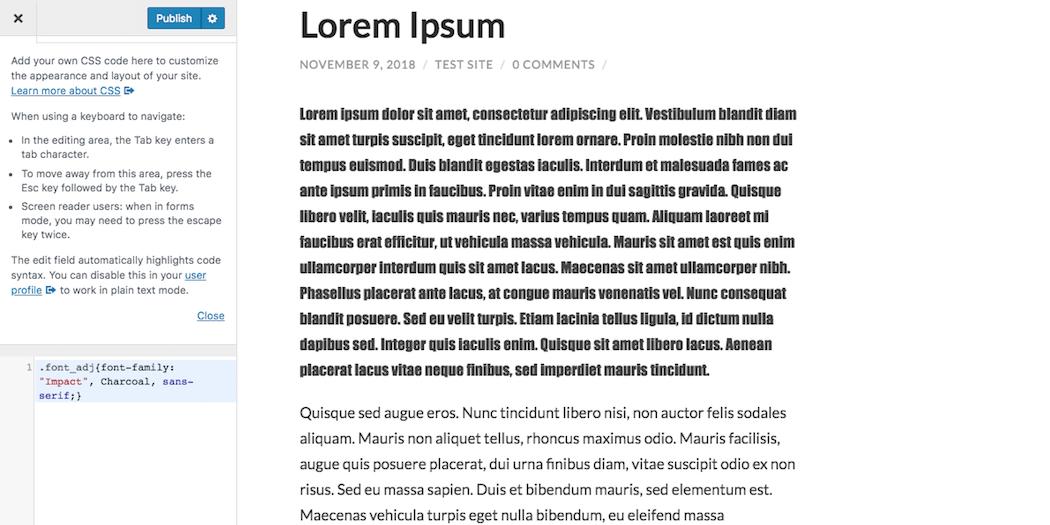 Adding HTML in the WordPress Customizer.
