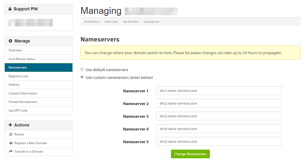 Setting a custom nameserver.