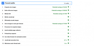 The PageSpeed passed audits section.
