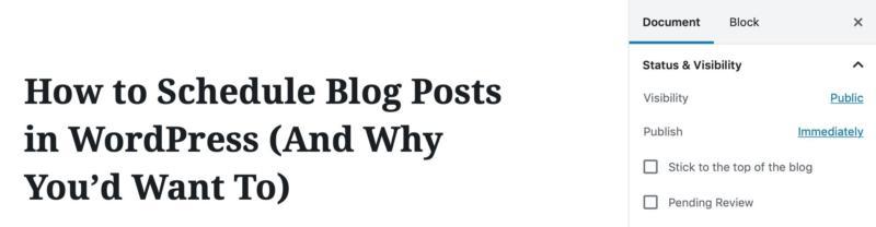 A view of the WordPress admin blog post screen.