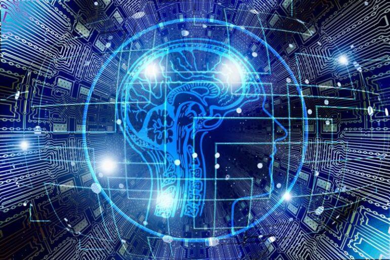 A human brain in cyberspace.