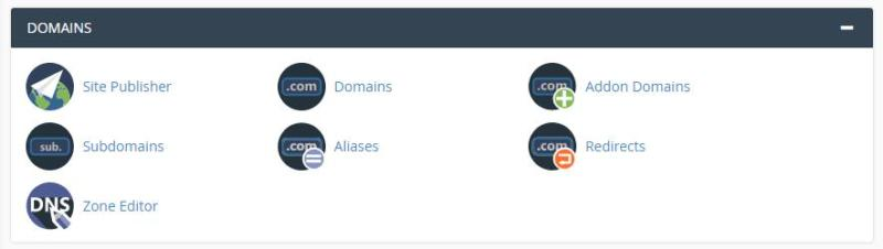 Selecting the Aliases option from within your cPanel.