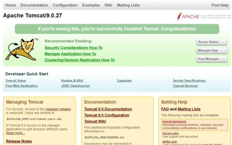 Apache Tomcat after installation.