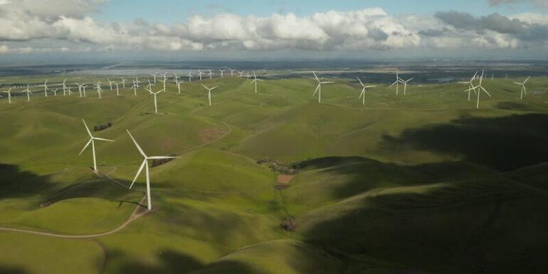 A wind farm.