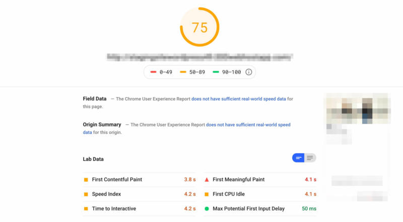 A PageSpeed Insights results page.