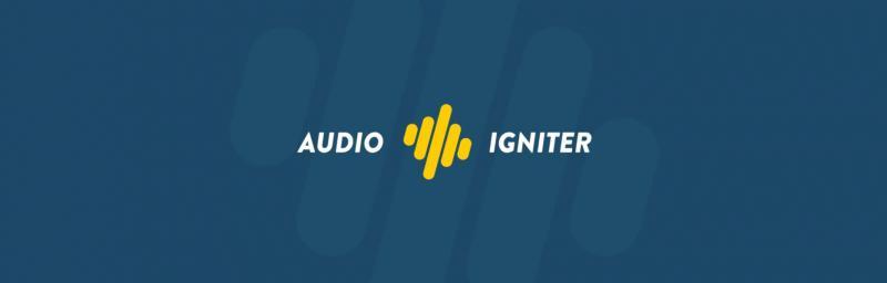 The AudioIgniter plugin.