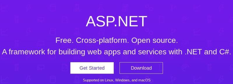 The ASP.NET framework.