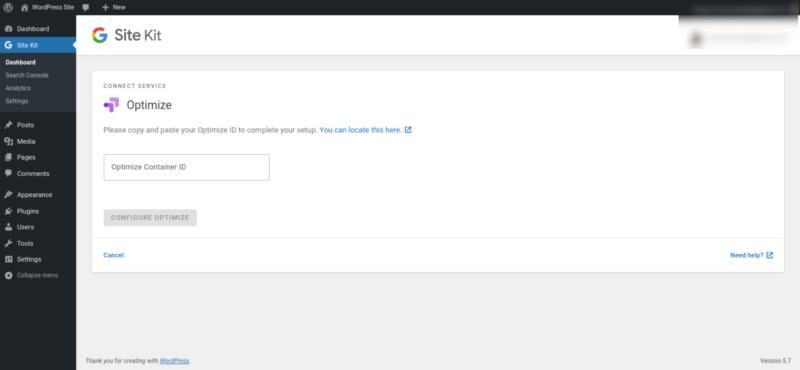 The screen to configure Google Optimize in WordPress.