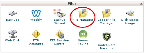 cPanel - Files - File Manager