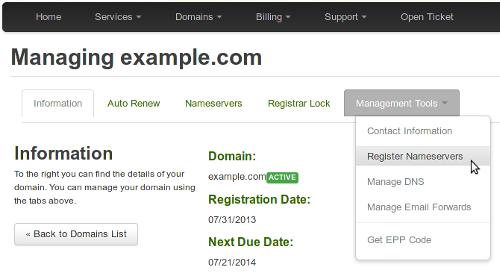 Customer Portal - Register Nameservers menu