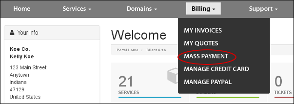 Customer Portal - Billing - Mass payment