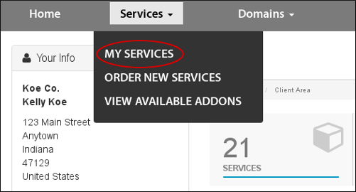 Customer Portal - Services - My Services menu